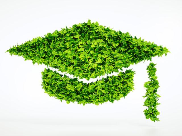 Photo : Pourquoi enseigner le développement durable en école de commerce ?