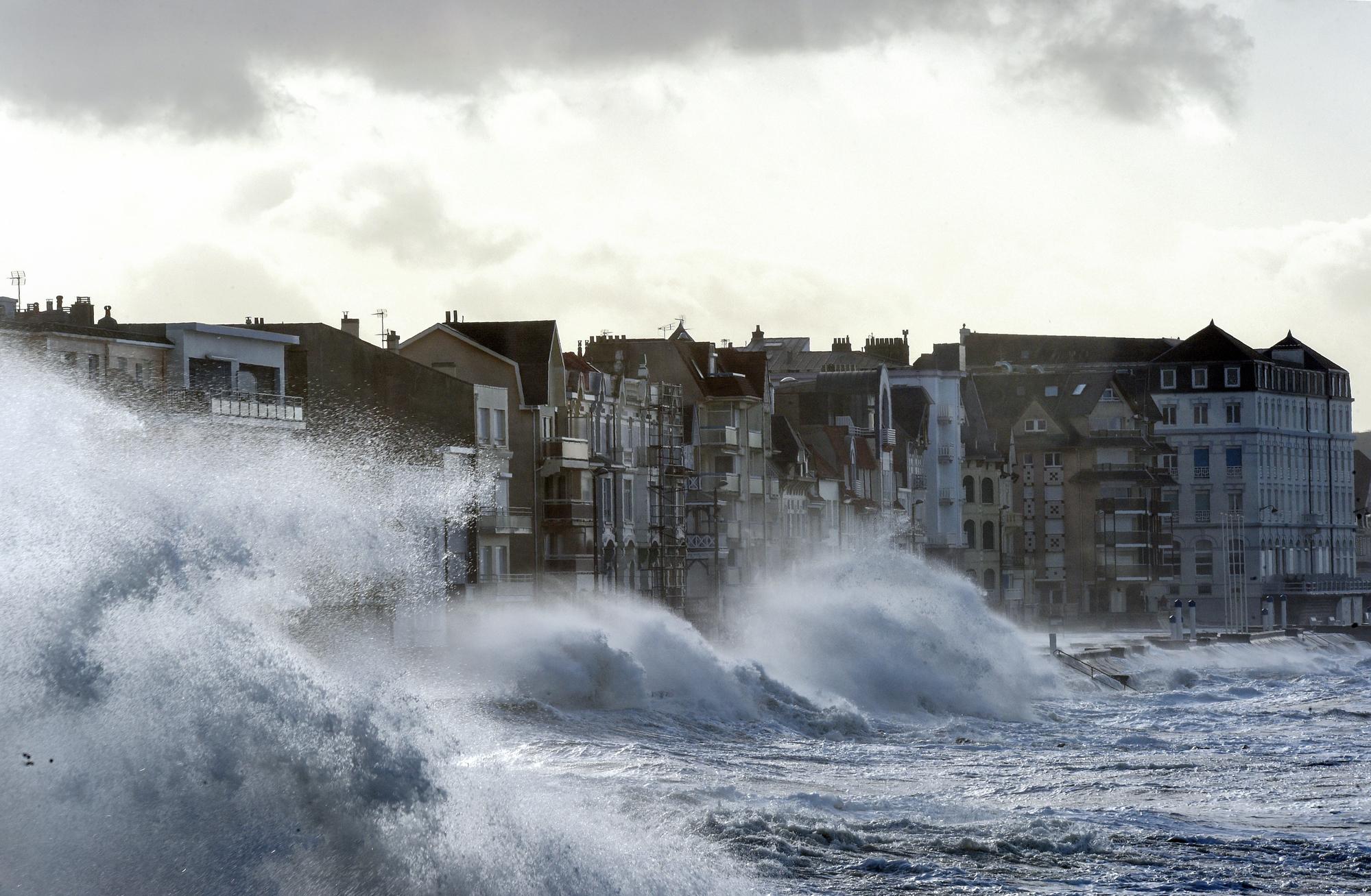 Tempête Eleanor : pourquoi certaines régions sont plus exposées aux coupures d'électricité