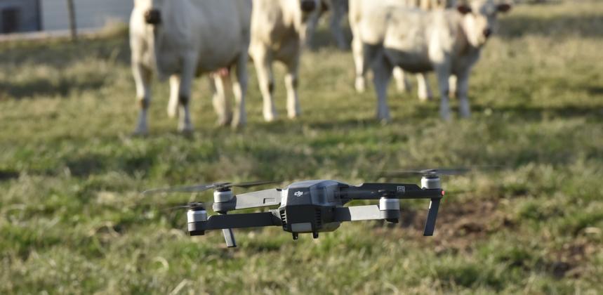 Photo : L'agriculture : un nouveau terrain d'étude pour l'EM Normandie