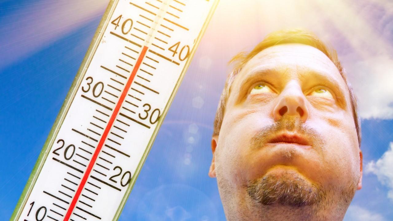 Photo : Travailler en cas de forte chaleur, que dit le droit ?