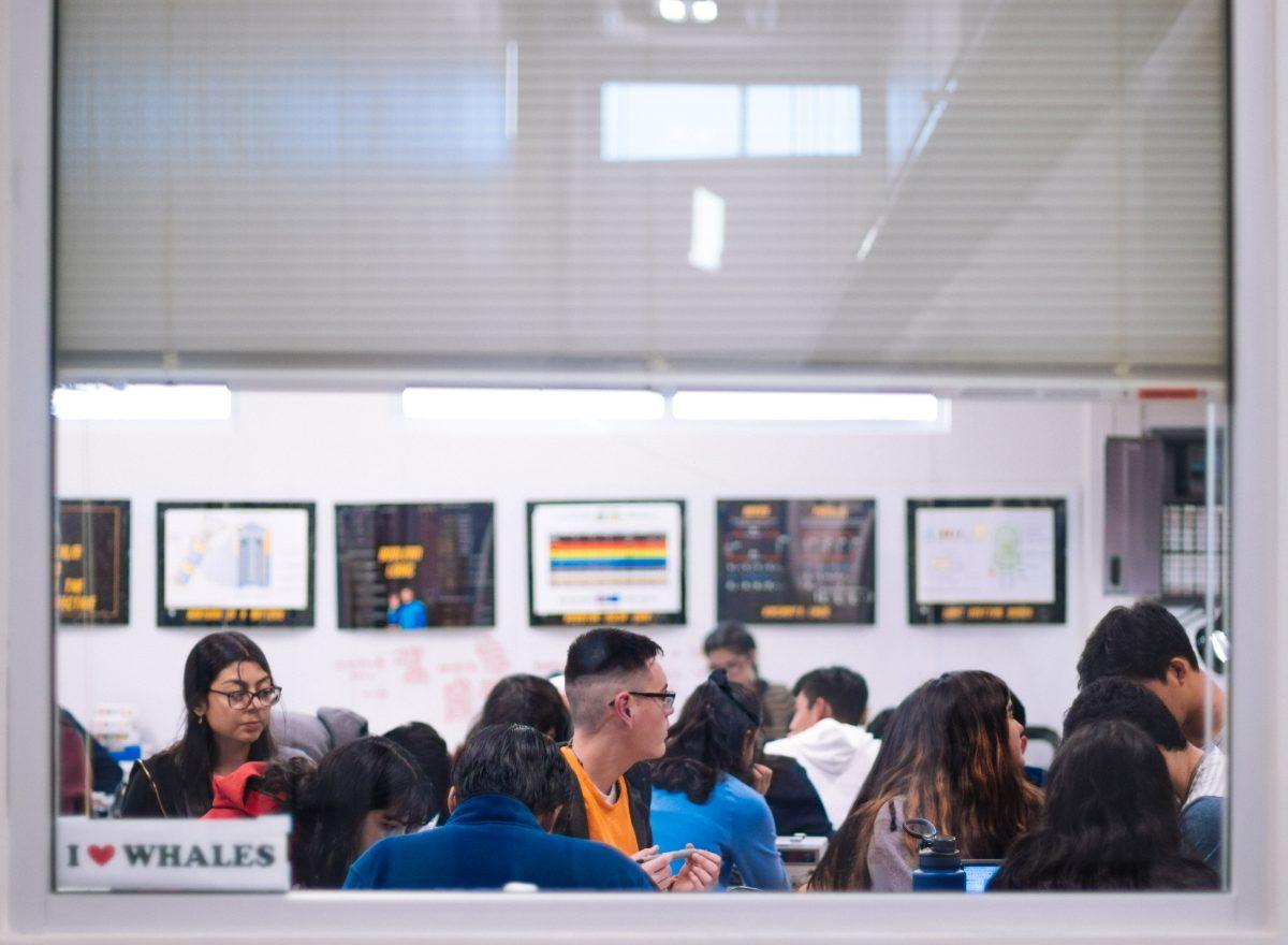 Photo : Enjeux de l'accueil des étudiants étrangers sur les campus universitaires