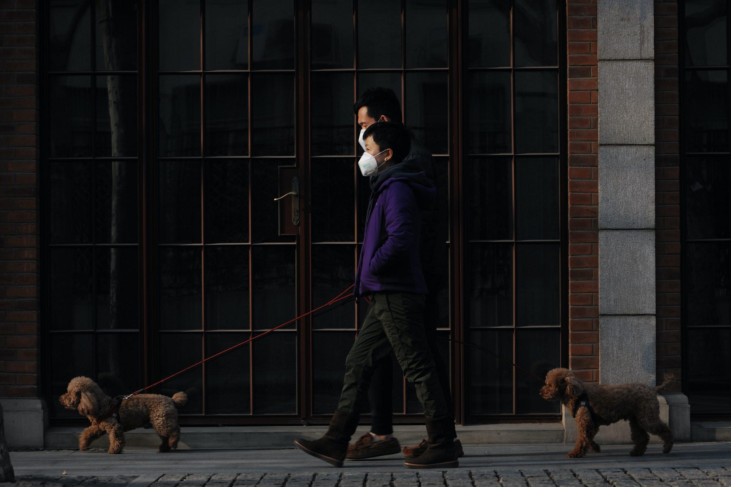 Photo : Decoding China's COVID‐19 'virus exceptionalism'